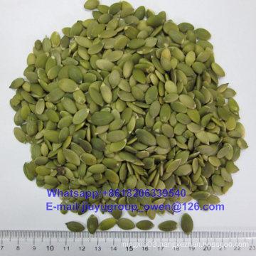 Export Grade New Crop Pumpkin Kernel