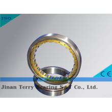 The High Speed Low Noise Cylindrical Roller Bearing (NJ2310EM)