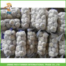 Fresh Good Farmer Garlic For Wholesale 5.0cm