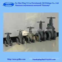 Válvula de entrada de aço fundido dn125 pn16