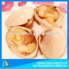 Todas as variedades de carne de moluscos congelados de surf hot-selling frutos do mar
