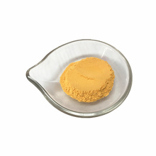 Pure spray dried  vegetable powder carrot powder with best price