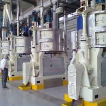 Maquinaria da planta de óleo da mostarda