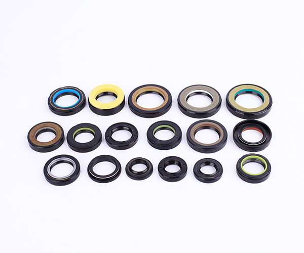 Power Steering Oil Seal
