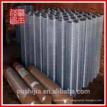 Anping Electro Galvanized Iron Wire Netting Mesh(factory)