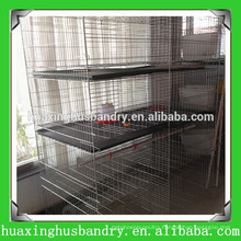 steel wire mesh Chicken Baby Cage China supplier