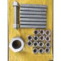 Горячего погружения Гальванизировать стандарт ASTM А182 Гайка шестигранная