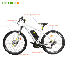 CE EN 15194 import bafang mid drive motor e mountain bike electric bicycle 48v 750w from China