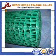 Professionelle Herstellung für PVC beschichtetes geschweißtes Drahtgeflecht in Rollen (YB-13)