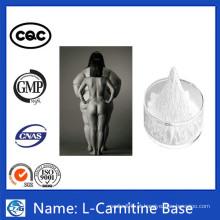 China Hot Sale Steroid Loss Weight Powder Carnitine
