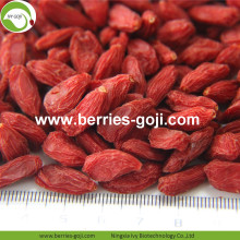 Factory Super Food Dried Mejores bayas de Goji