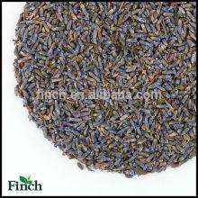 Neue 100% natürliche Lavendel Blume Kräutertee