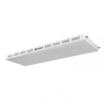 Terapia de luz LED infrarroja de Office Home 660nm 850nm