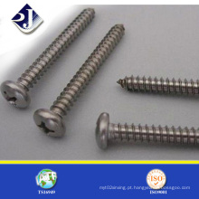 Fornecedor Phillips Self Tapping Screw