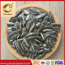 Best Quality 361 Sunflower Seeds 601