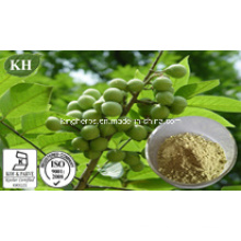 Natural Organic Saw Palmetto Extract Fatty Acids 25%-80% by HPLC; Saw Palmetto Oil by Scf-CO2