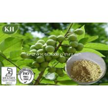 Natural Natural Saw Palmetto extrair ácidos gordos 25% -80% por HPLC; Óleo de Palmetto Saw por Scf-CO2