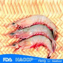 HL002 Wildfang gefrorene gefrorene Pud Rote Garnelen