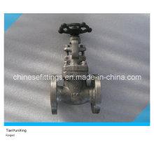 Válvula de porta em aço inoxidável forjado A182 F304