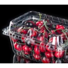 caja de embalaje de plástico transparente de concha para fresa