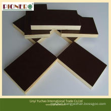 Two Molding High Quality Film Faced Plywood for European Market