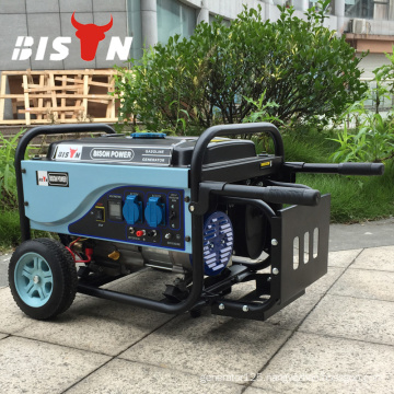 BISON (China) Single Phase Air cooled Power Portable Generator 10kw Generator