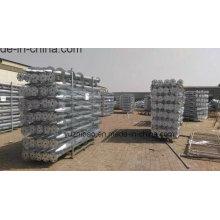 Energía solar DIP caliente Tornillo de tierra galvanizado