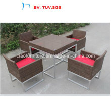 2016 Garden Furniture Patio Dining Table and Chair (CF965)