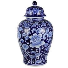 Красивый синий и белый имбирь Jar