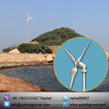Energia Eólica de Energia Renovável de 5000W para Rede e Fonte de Alimentação de Rede Elétrica