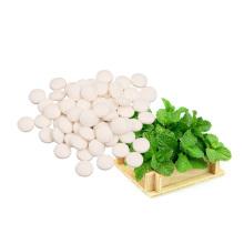 Nouveaux produits Édulcorant biologique Extraits de menthe Stevia