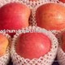Pomme de fuji rouge chinoise, pommes, pomme de santé