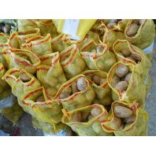 Картофель свежей голландской кукурузы (80-150 г)