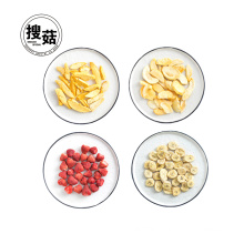 Good price high quality mixed fruit chips