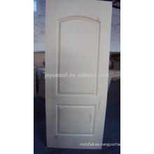 Piel de la puerta exterior de alta calidad / piel de la puerta moldeada / piel de la puerta de la chapa