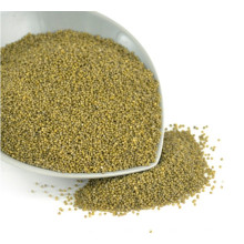 New Corp Hot Sale MP Green Millet In Husk for bird