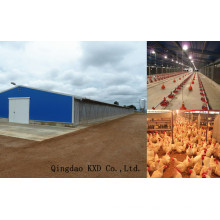 Prefabricated Poultry House/Chicken House (KXD-PCH5)