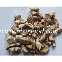Высокое питание Сушеные органические натуральные стебли грибов Shiitake