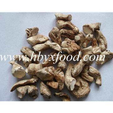 Alto contenido de nutrición secado orgánico Shiitake natural de setas Tallo