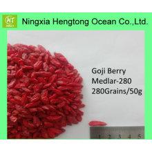 Sorgfältig ausgewählte Ningxia Gesunde Goji Beere / Wolfberry mit angemessenem Preis