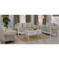 Sofá da sala de visitas / sofá home / sofá de madeira (D92B)