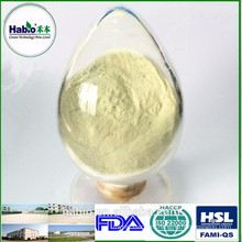High Concentrated Xylanase Enzyme