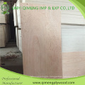 Bbcc Grade 3′x6′ 3′x7′ 3′x8′ Bintnagor Plywood Door Skin with Competitive Price