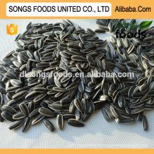 Semillas de girasol secas de alimentos 5009