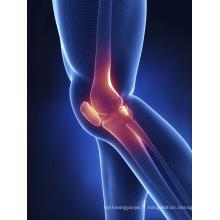 (Sulfate de chondroïtine) - Sulfate de chondroïtine d'arthrite