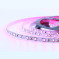 3528SMD Tira flexible color rosa de 60 pliegues
