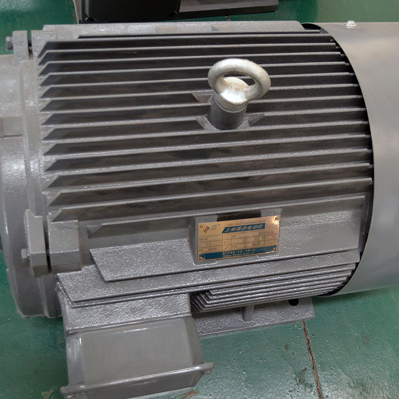Simens motor of pellet machine