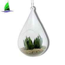 Terrário de vidro de suspensão da planta de ar do vaso