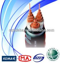 Cable de transmisión impermeable de la alta calidad 0.6 / 1kV CU / XLPE / SWA / PVC