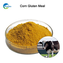 Farinha de glúten de milho a granel para venda de Suntybio